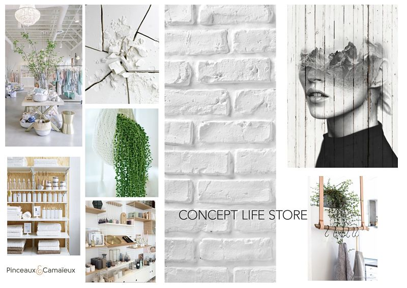 Boutique Life Store Cannes Planche Ambiance 1